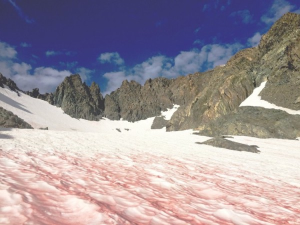 Dyatlov Pass: Blood snow, watermelon snow, red snow