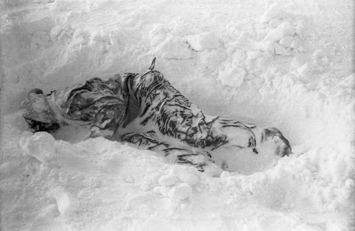 Zinaida Kolmogorova post-mortem
