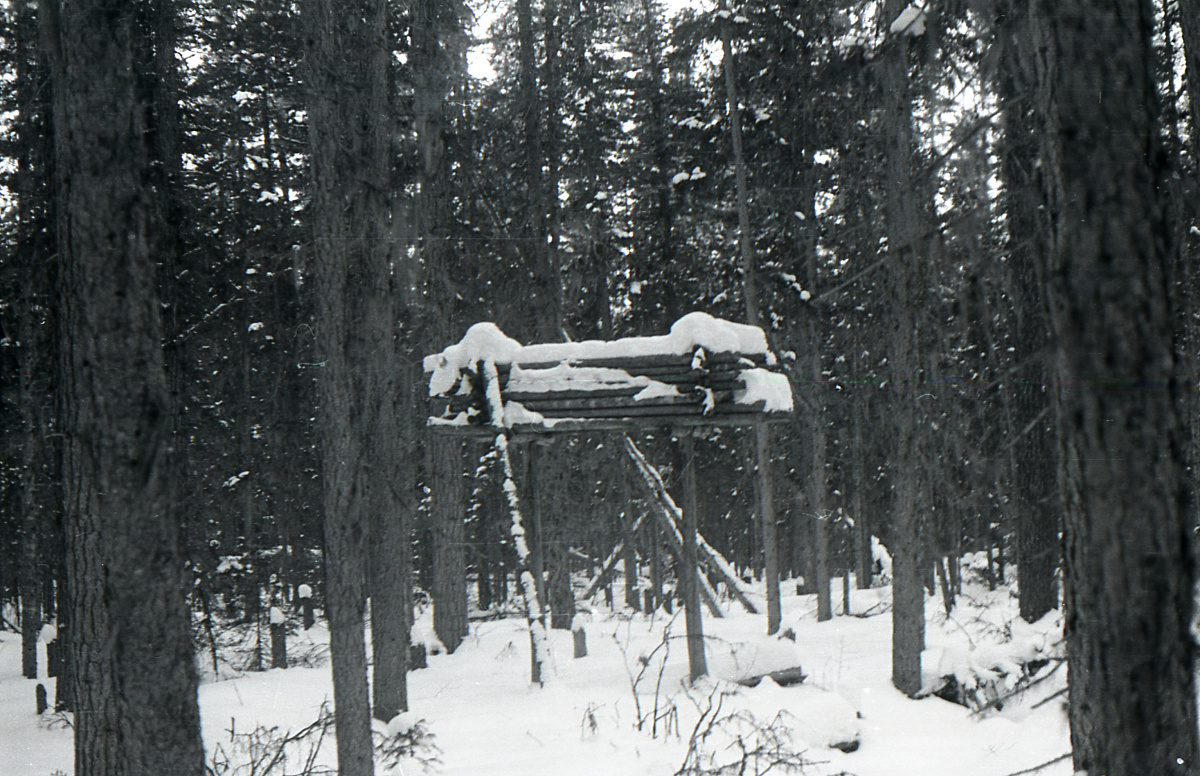 Dyatlov Pass: Photo of a Mansi labaz from Krivonischenko's camera