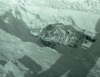 Discovery of Slobodin. Photo from Mar 5.