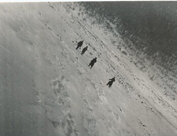 "Photo by Grigoriev. On the back: ""In search of the students who died. March 13, 1959. Ortyukov, I.S. Prodanov and others descending from height 1075m, where the tent of the deceased was found"""