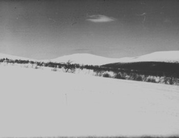 According to Yakimenko, a ski stick marked the place where Kolmogorova's body was found. Photo taken in March 1959. Presumably 3rd shift