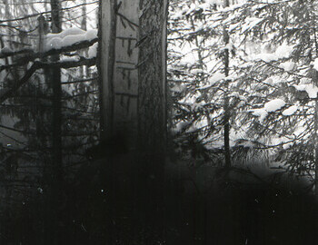 Mansi markings that tell how many hunters passed through the area and their clan.