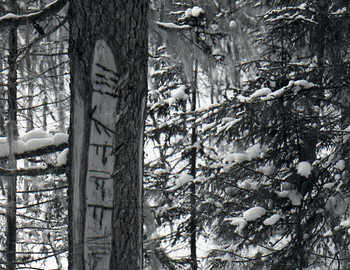 Mansi markings left by local hunters